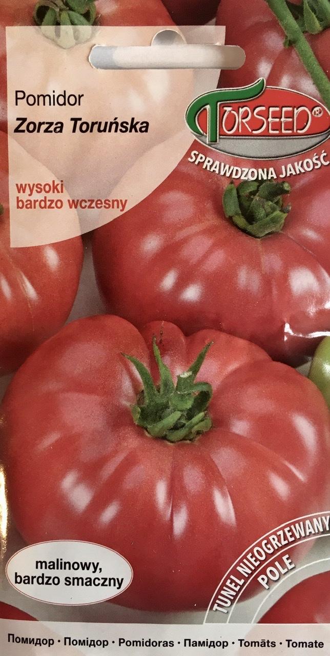 Pomidor Zorza Toruńska