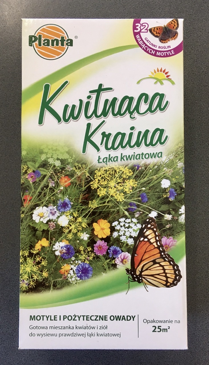 Kwitnąca Kraina Motyle