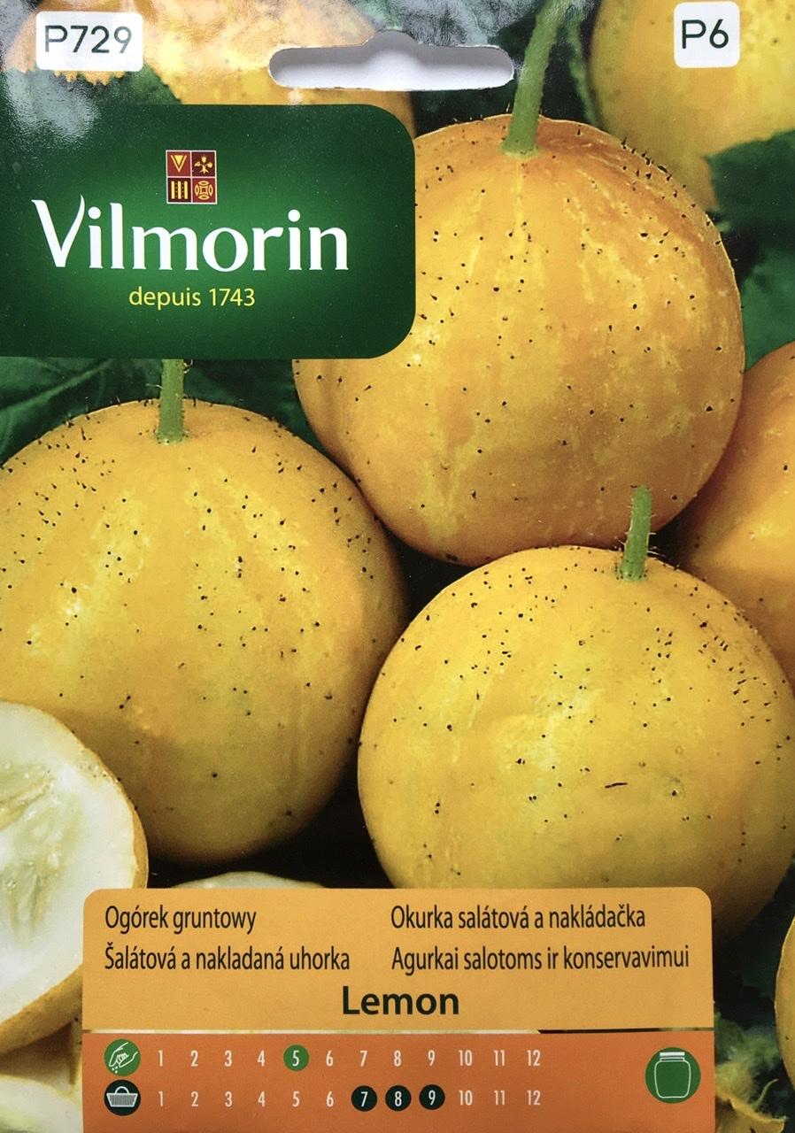 Ogórek Lemon