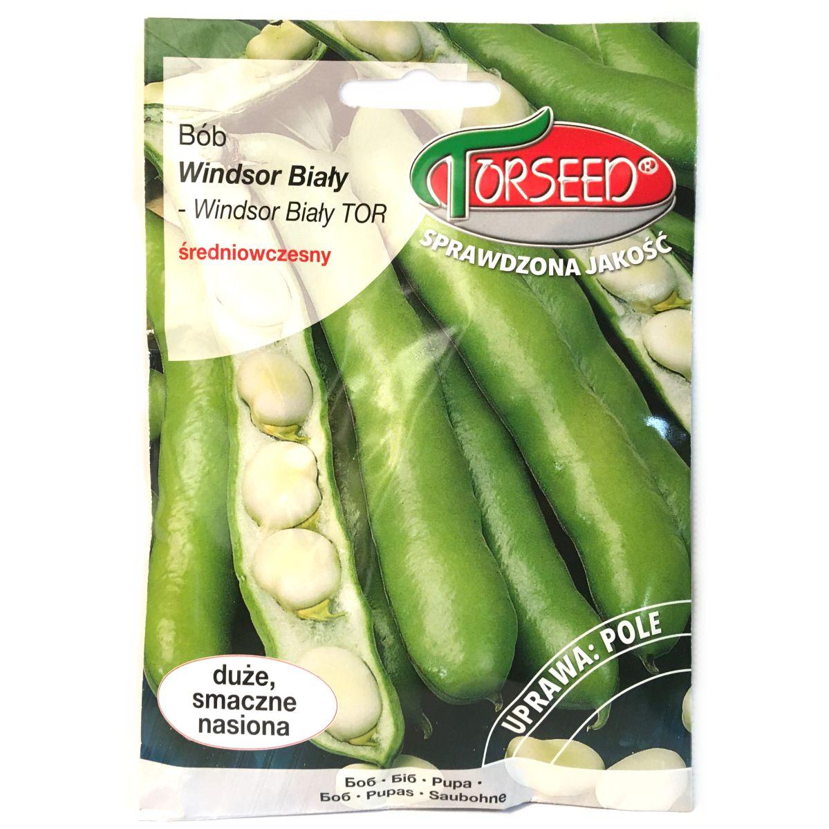 Bób Windsor Biały nasiona Torseed
