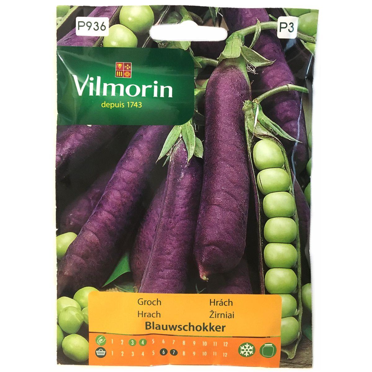 Groch Blauwschokker nasiona Vilmorin