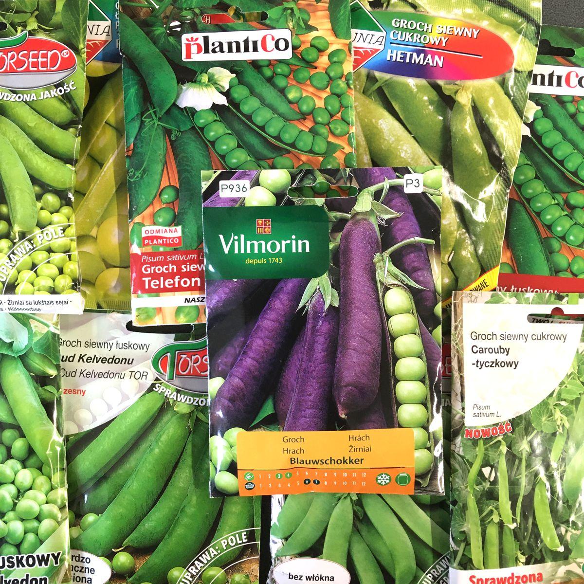 Grochy nasiona różne