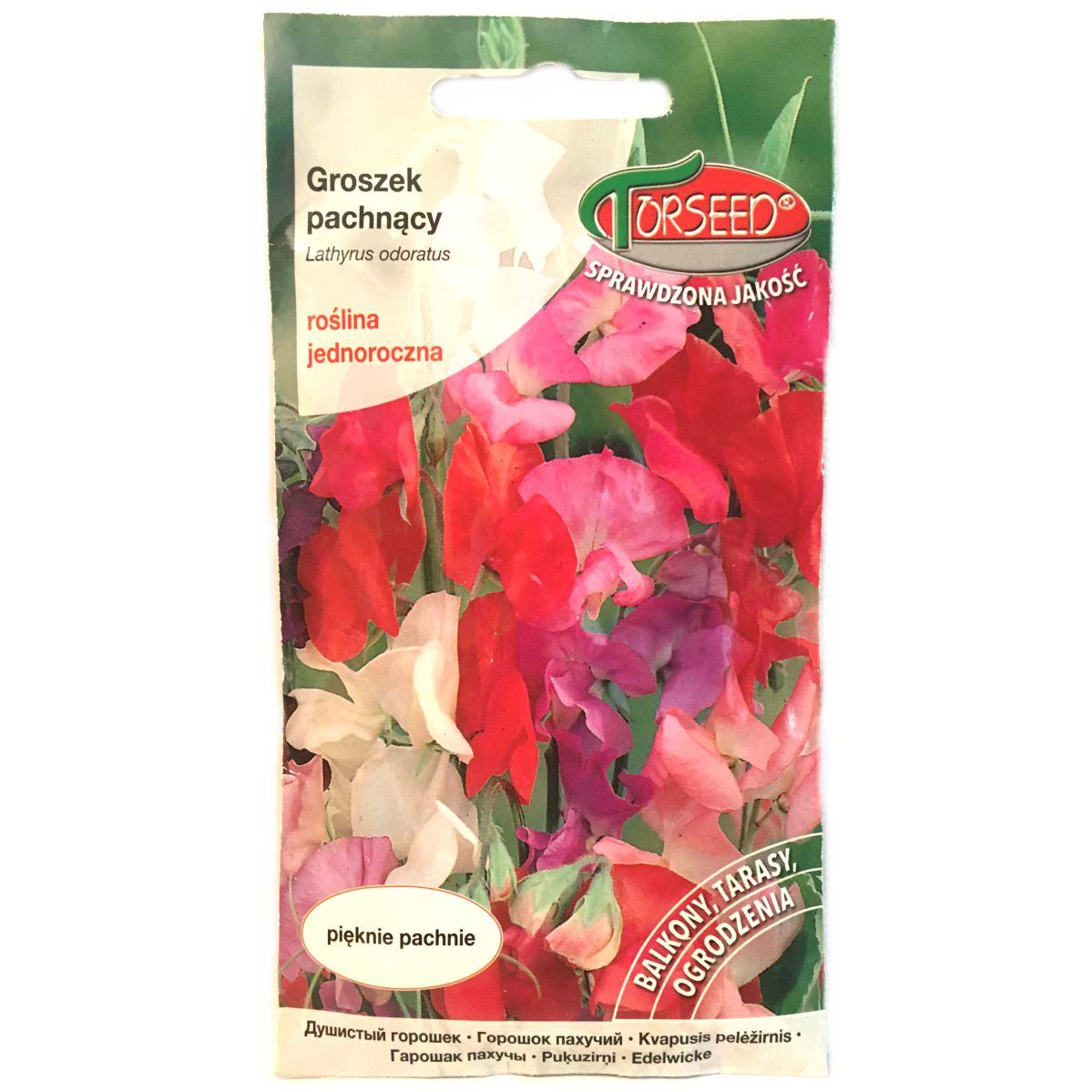 Groszek pachnący nasiona Torseed