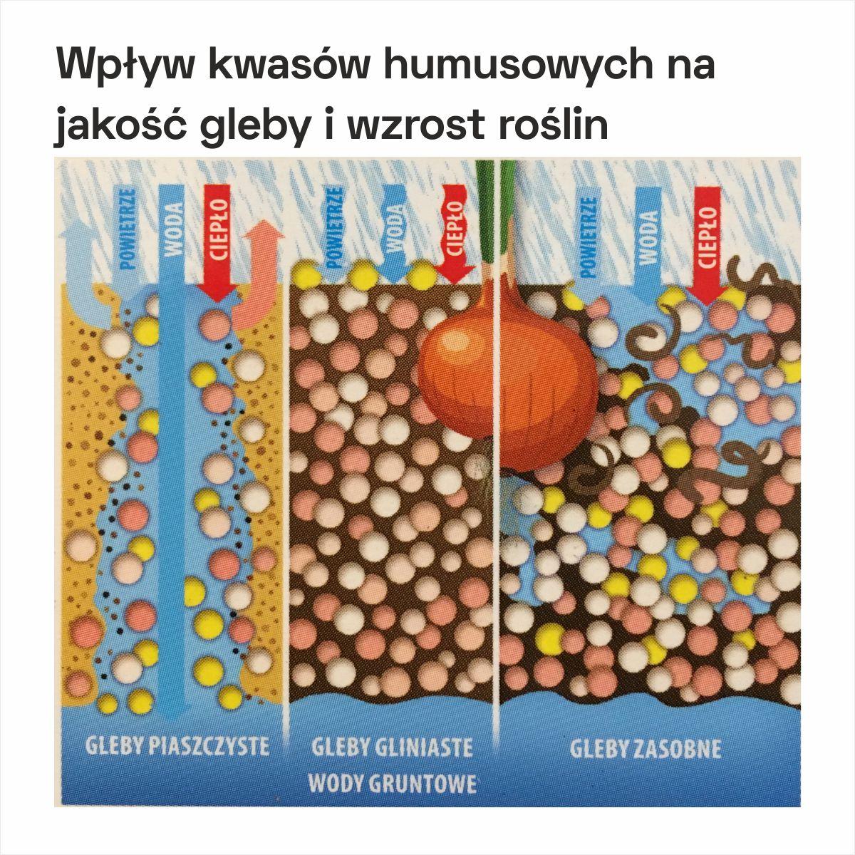 Wpływ kwasów humusowych na jakość gleby