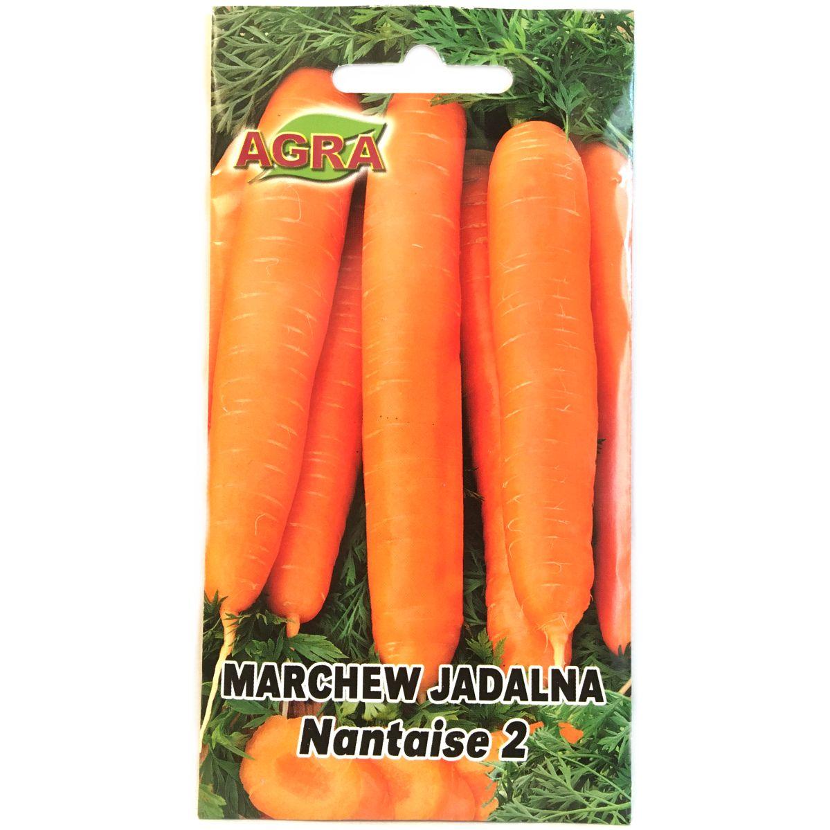 Marchew Nantaise 2 nasiona Agra