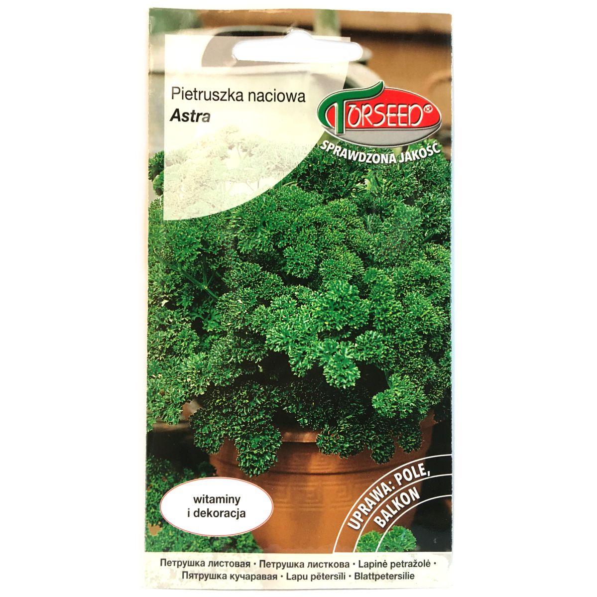 Pietruszka Astra nasiona Torseed