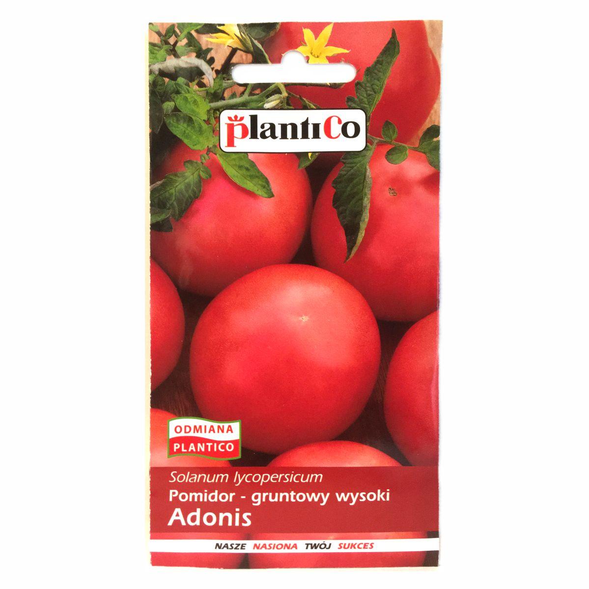 Pomidor Adonis nasiona Plantico