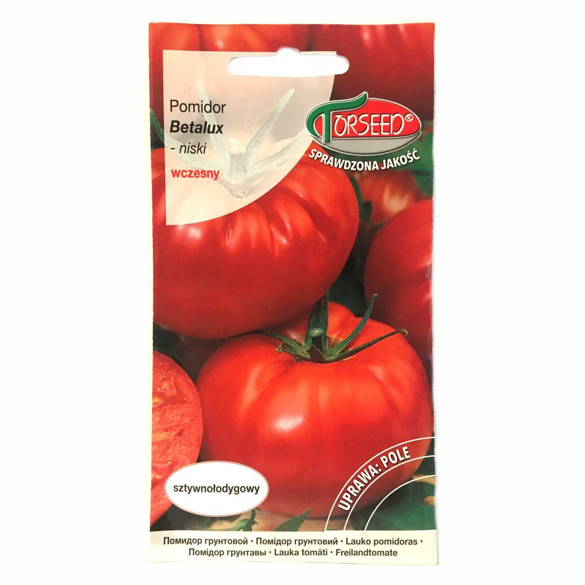 Pomidor Betalux nasiona Torseed