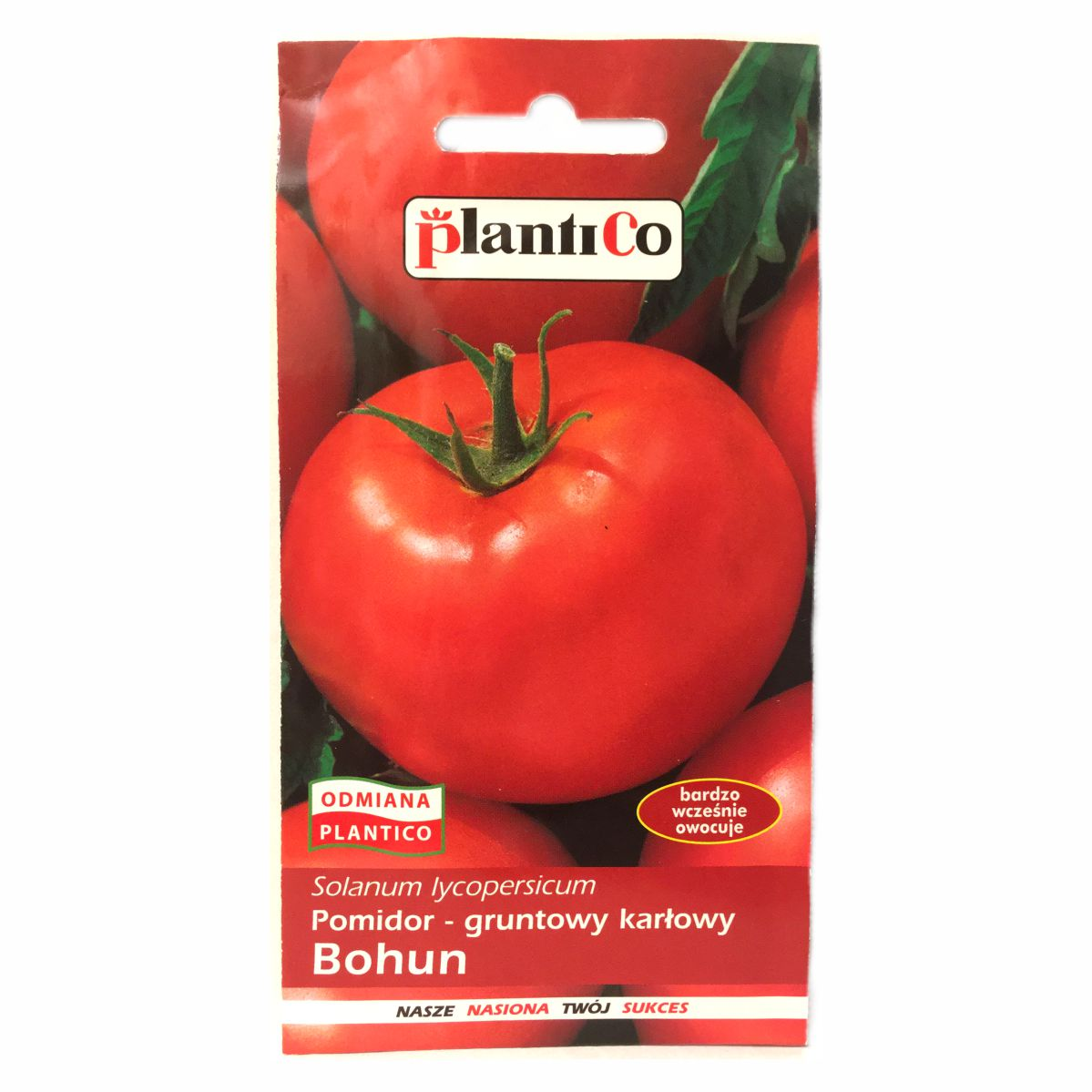 Pomidor Bohun nasiona Plantico