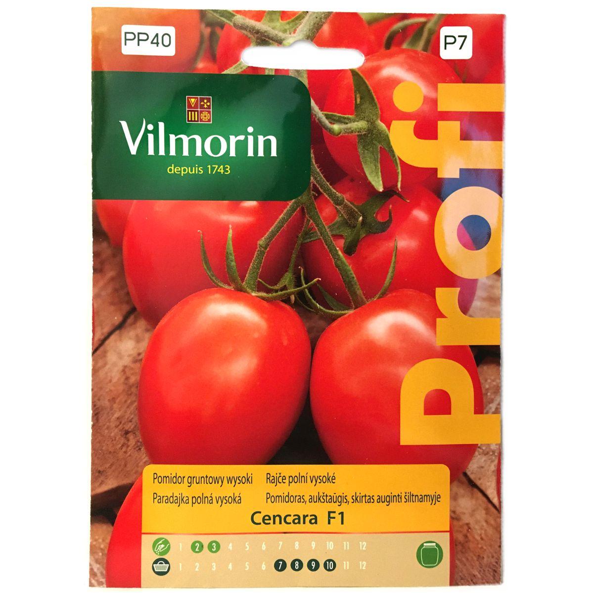 Pomidor Cencara F1 nasiona Vilmorin