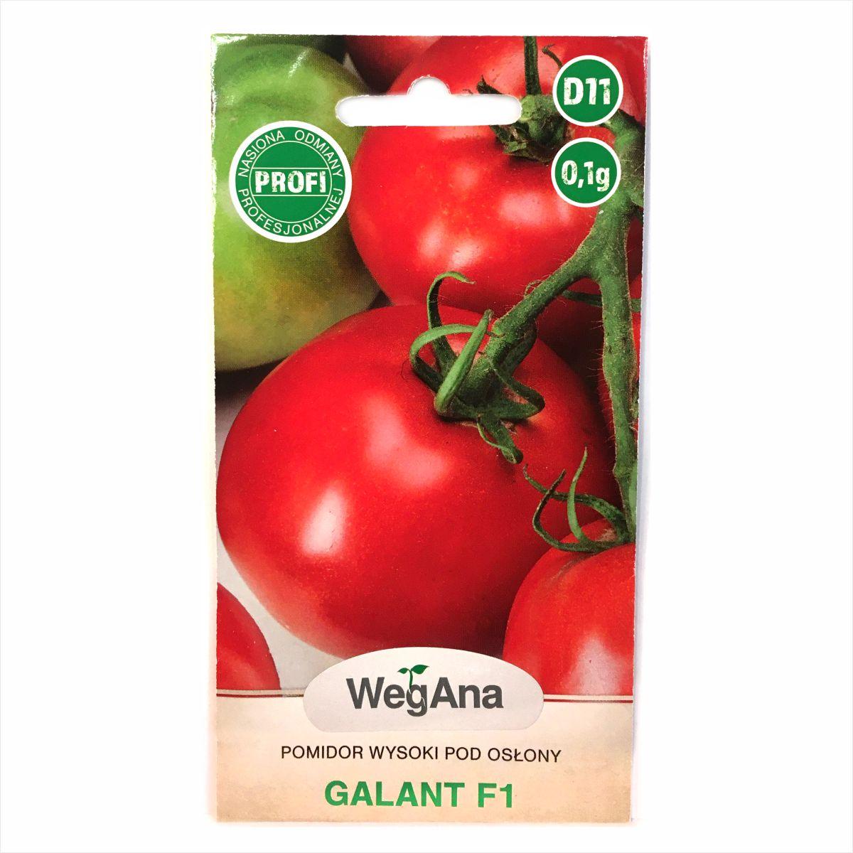 Pomidor Galant F1 nasiona WegAna