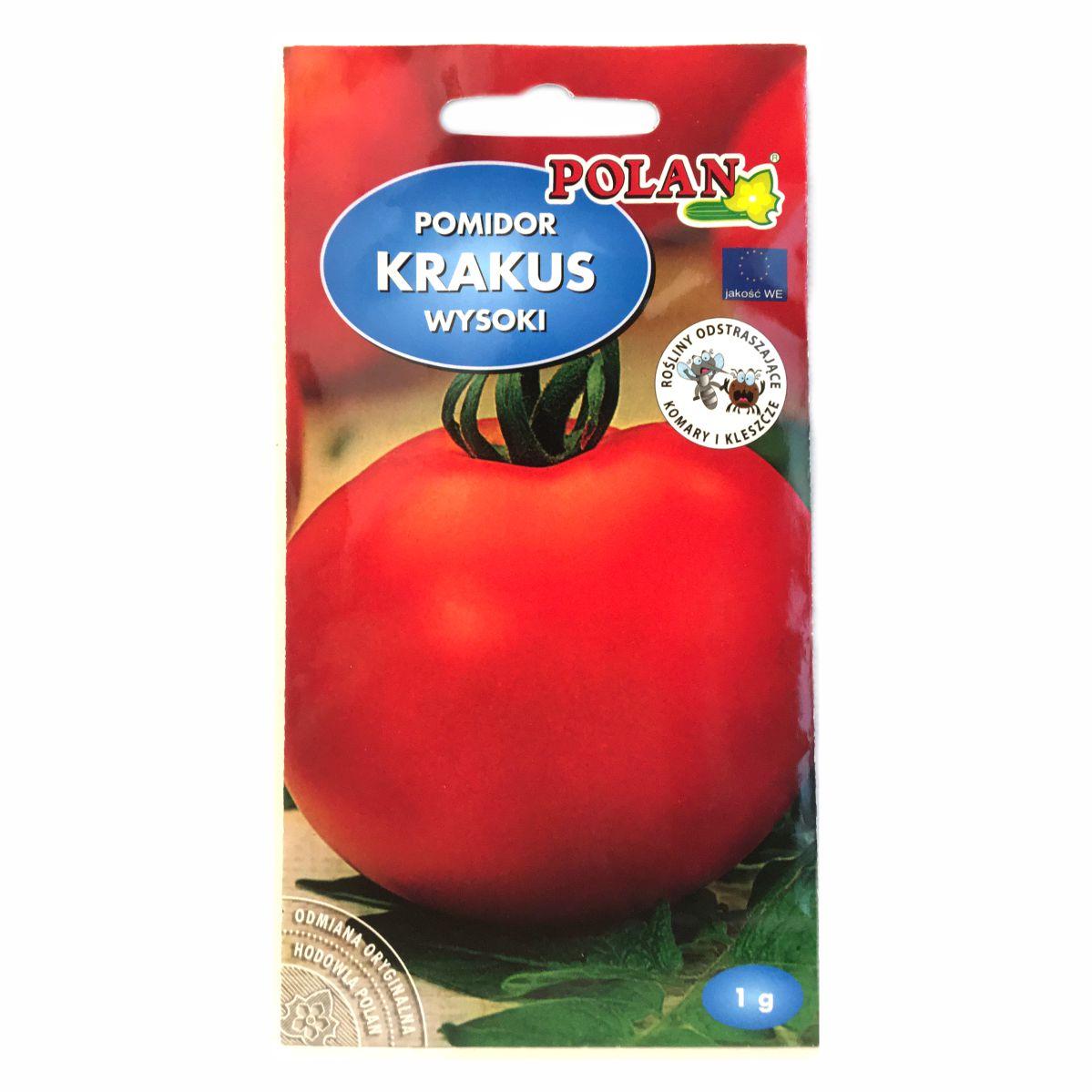 Pomidor Krakus nasiona Polan