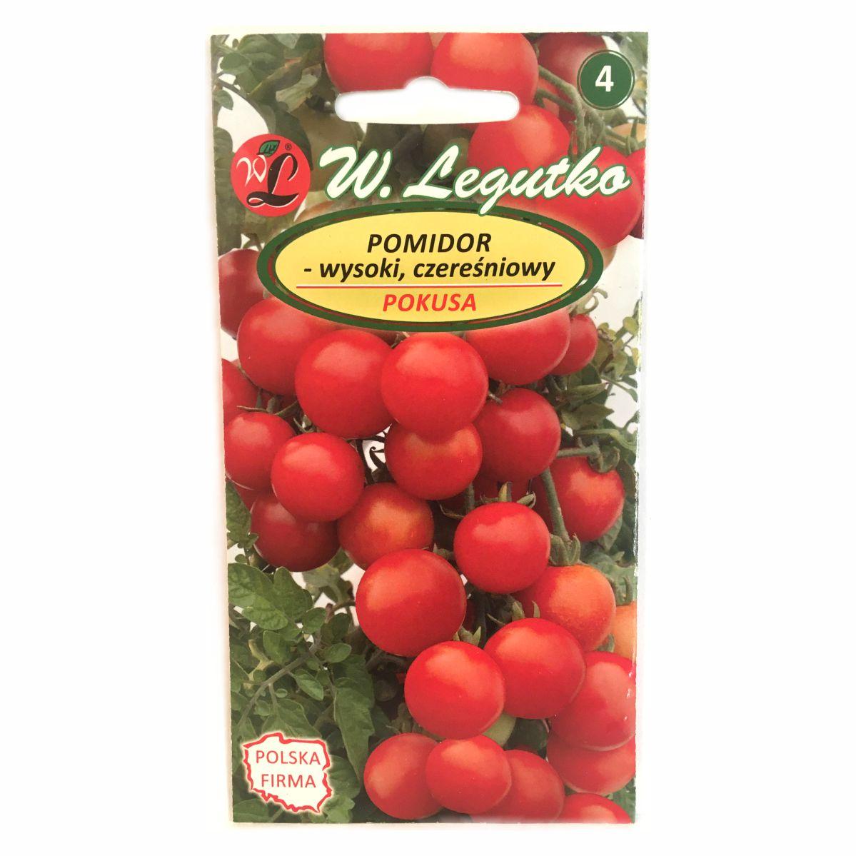 Pomidor Pokusa nasiona Legutko