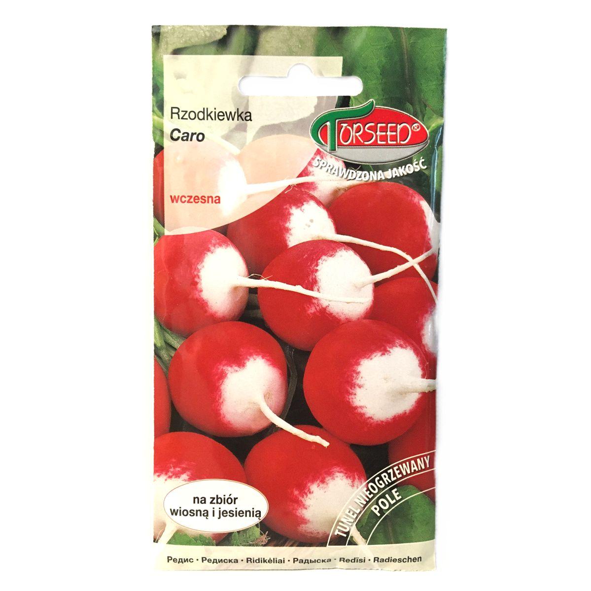 Rzodkiewka Caro nasiona Torseed