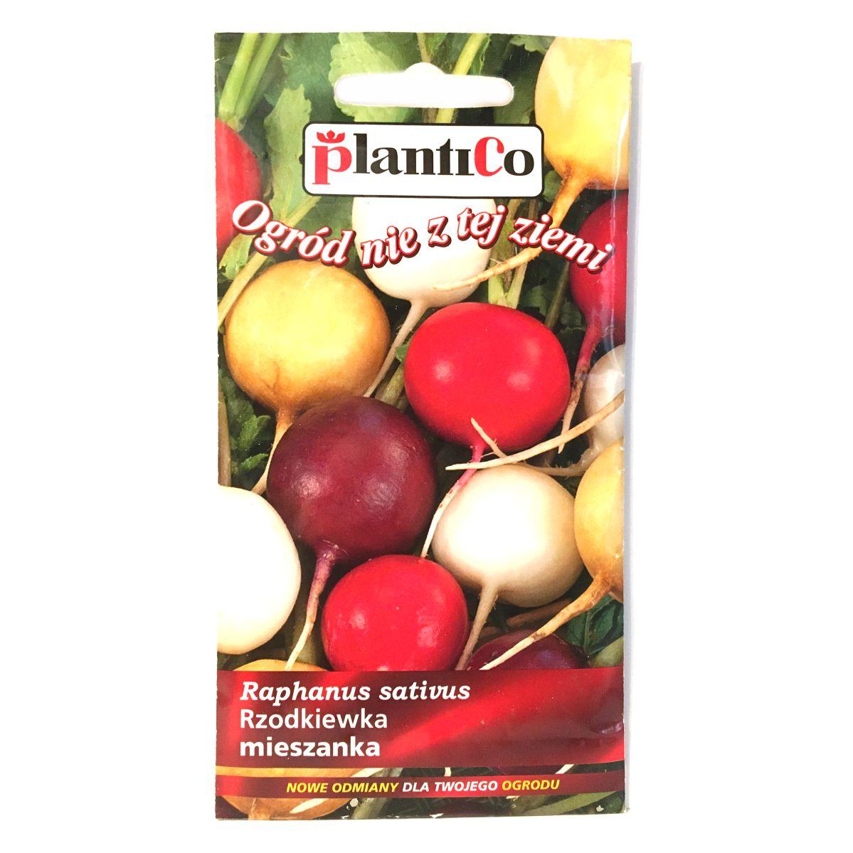 Rzodkiewka mieszanka odmian nasiona Plantico