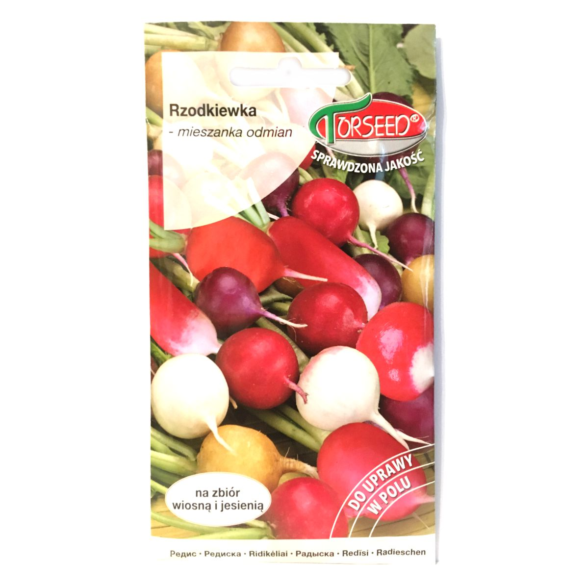 Rzodkiewka mieszanka odmian nasiona Torseed