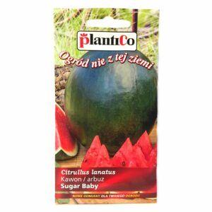 Arbuz kawon Sugar Baby nasiona Plantico
