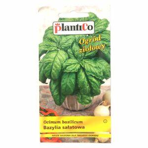 Bazylia sałatowa nasiona Plantico