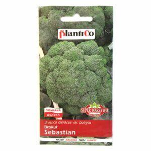 Brokuł Sebastian nasiona Plantico