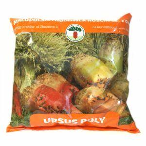 Burak pastewny Ursus Poly nasiona MHR