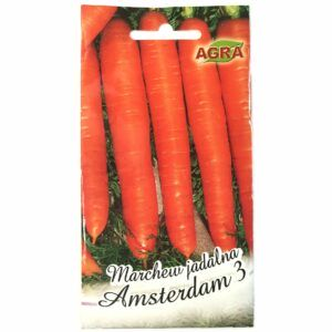 Marchew Amsterdam 3 nasiona Agra