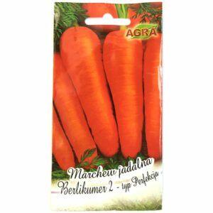 Marchew Berlikumer 2 Perfekcja nasiona Agra