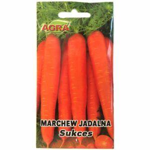 Marchew Sukces nasiona Agra