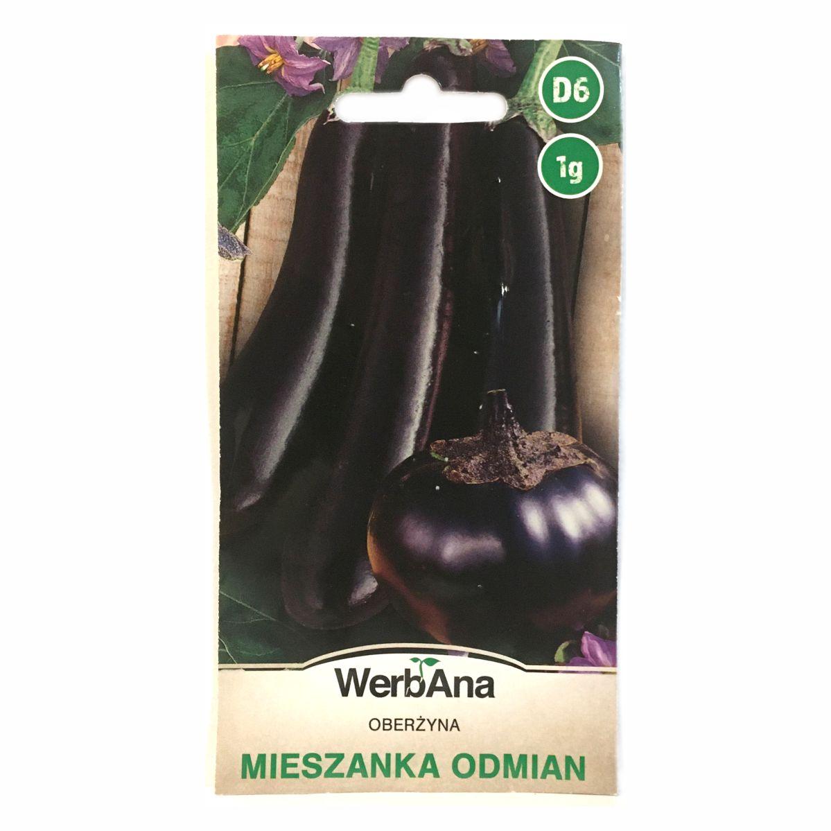 Oberżyna bakłażan miesznka odmian nasiona WegAna