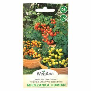 Pomidor koktajlowy mieszanka odmian nasiona WegAna