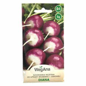 Rzodkiewka Diana nasiona WegAna