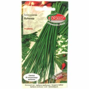 Szczypiorek Bohemia nasiona Torseed